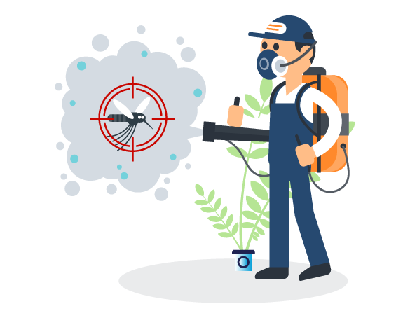 Professional Pest Control Burleigh Waters